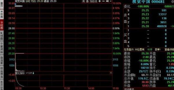 视觉中国股票跌停